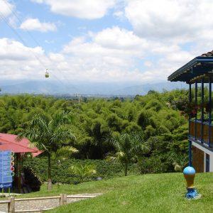 Bosque_de_guadua_en_el_Parque_del_Cafe-Colombia